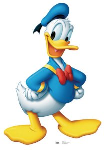 Known in Sicily as Donald Goose