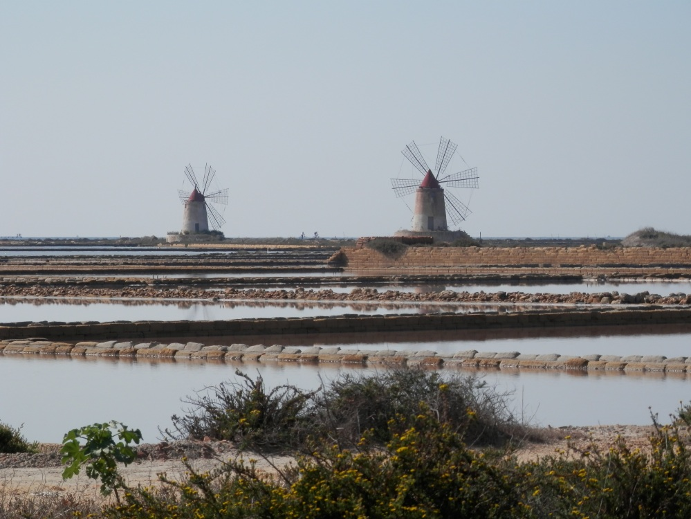 These windmills power Archimedes screws, which pump water upwards from the sea pools further out to sea, into the pools further inland. Each successive pool has undergone more evaporation and the saltiness is therefore more concentrated. Archimedes was a Sicilian, by the way, born in Siracusa.