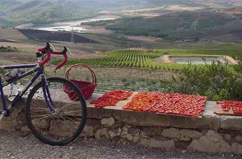 cycling_in_sicily